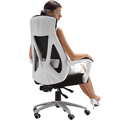 Hbada Eergonomic Office Chair